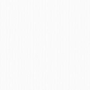 Рокси-2 фон белый в/ф 1,06*10м 2В1ГТФ1 /Фокс/6/