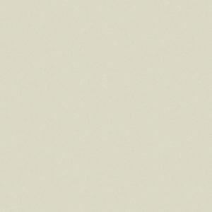 4508-2 Уни св-салатов. вгтф Spring Collection Erismann 6