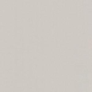 60164-05 Пыльца легкая дымка  BASIC promo Erismann